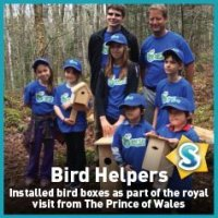Bird Helpers