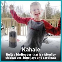 kahale bird feeder