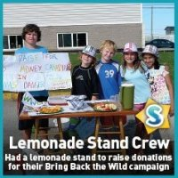 Lemonade stand crew super rangers