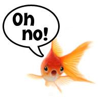 fish-speech-bubble-oh-no