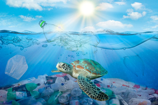 turtle-with-plastic-pollution