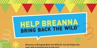 fundraising, birthday party, bring back the wild