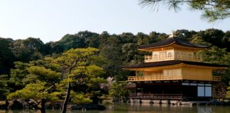temple, japan, tree, water